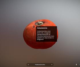 3D Scan: Kürbis