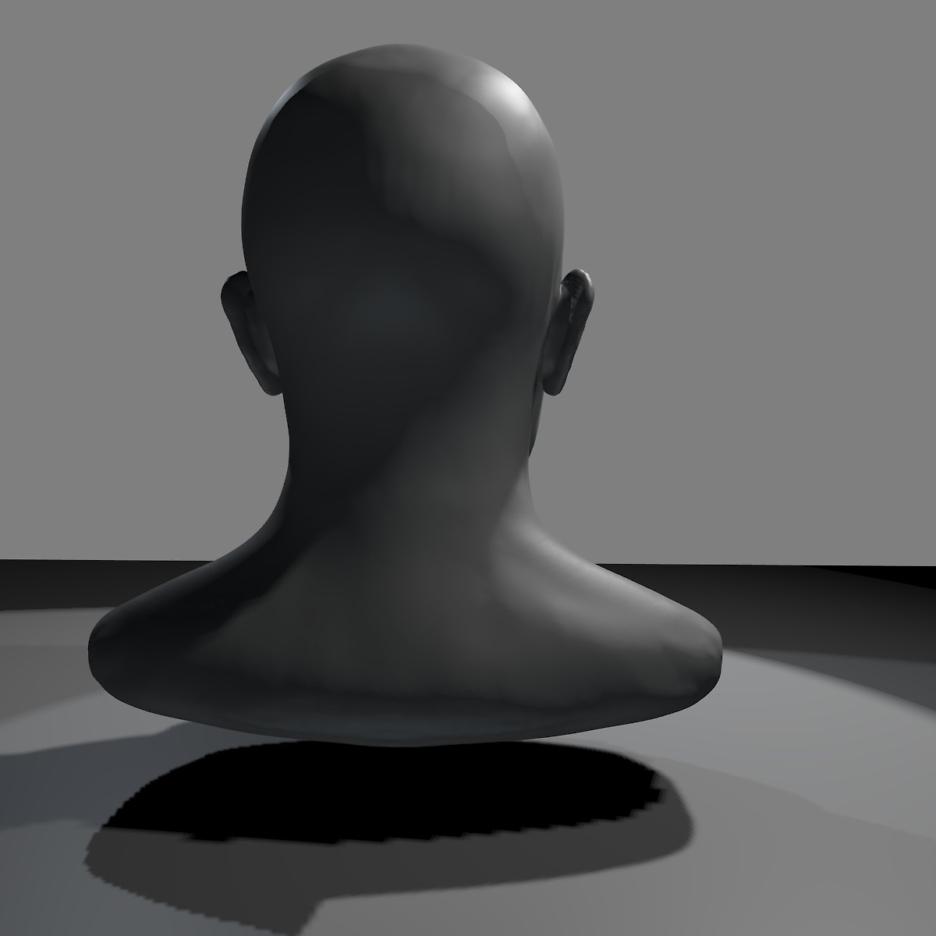 Proportionen des Kopfes und des Gesichts