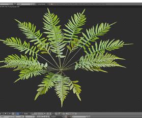 Natur in 3D