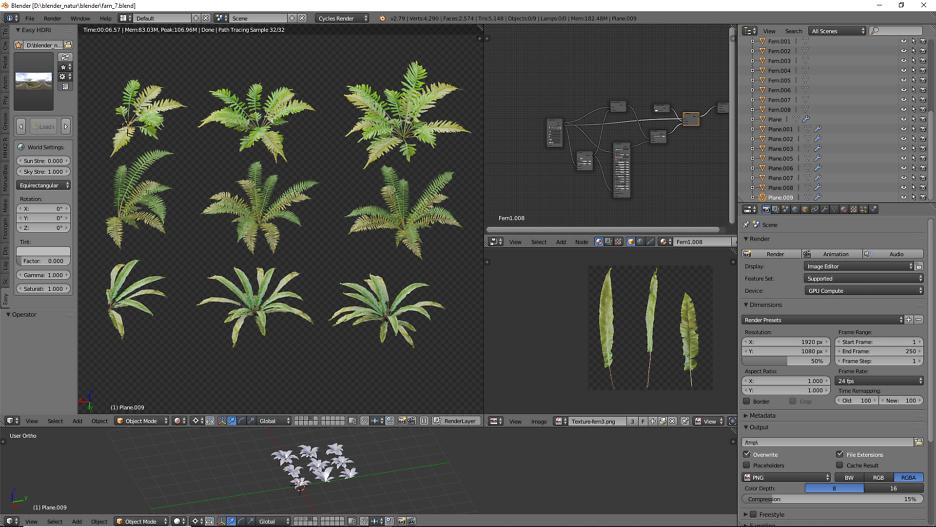 Farn Pflanzen Sammlung