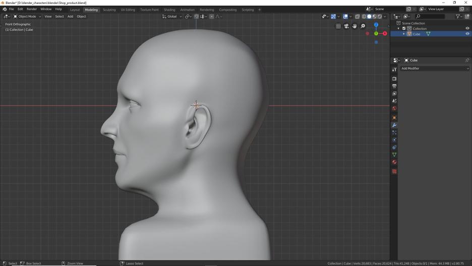 Männlicher Kopf