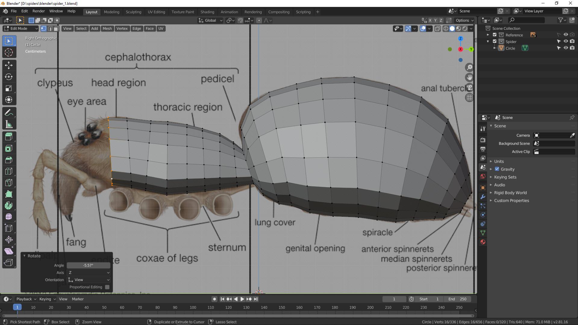 3D Modellierung einer Spinne in Blender Bild 1