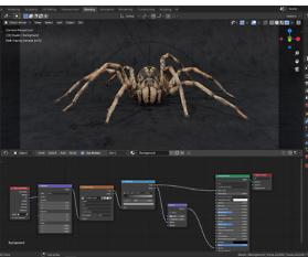 Fotostudio für die Spinne – Teil 11