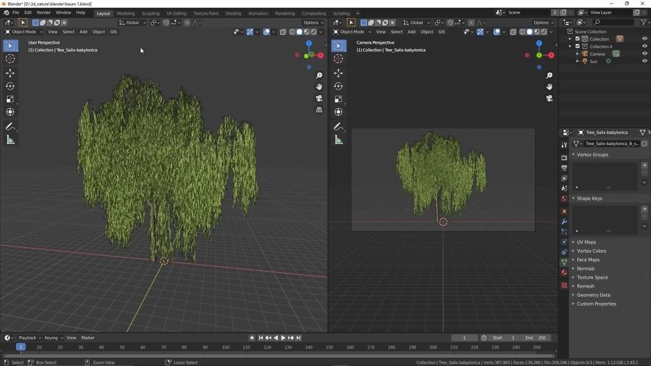 Echte Trauerweide Baum 1